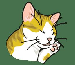 NO CAT NO LIFE Satowo cat stamp2 sticker #196198