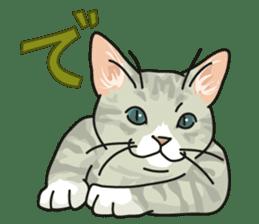 NO CAT NO LIFE Satowo cat stamp2 sticker #196199