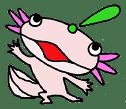 Mr.Mexico salamander sticker #201624
