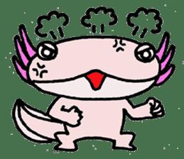 Mr.Mexico salamander sticker #201633
