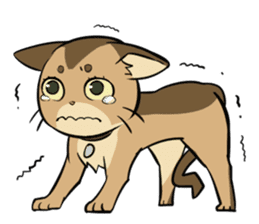 Abyssinian's hinata sticker #206313