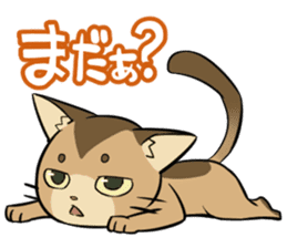 Abyssinian's hinata sticker #206327