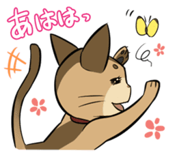 Abyssinian's hinata sticker #206328