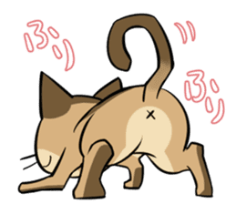 Abyssinian's hinata sticker #206331