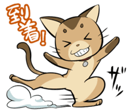 Abyssinian's hinata sticker #206335