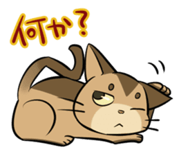Abyssinian's hinata sticker #206339