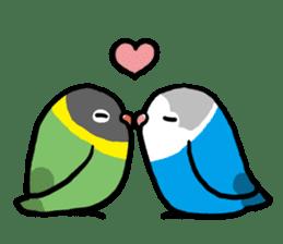 pet birds sticker #209901