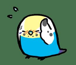 pet birds sticker #209906