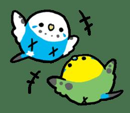 pet birds sticker #209909