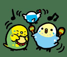 pet birds sticker #209911