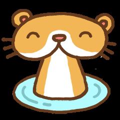 Otter-kun!