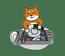 Pochi kun sticker #211096