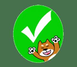 Pochi kun sticker #211104
