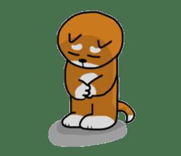 Pochi kun sticker #211109
