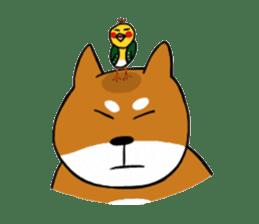 Pochi kun sticker #211121