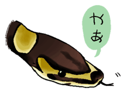 Python with Japanese message sticker #215133