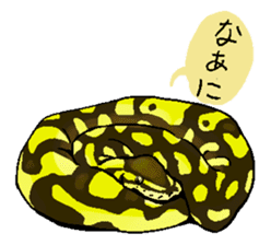 Python with Japanese message sticker #215138