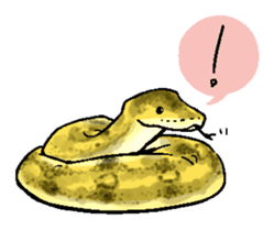 Python with Japanese message sticker #215140