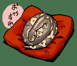 Python with Japanese message sticker #215145