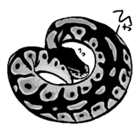 Python with Japanese message sticker #215150
