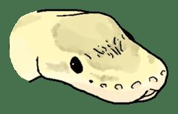 Python with Japanese message sticker #215156