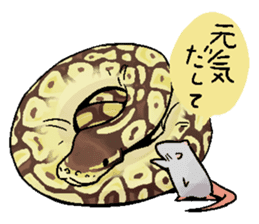 Python with Japanese message sticker #215162