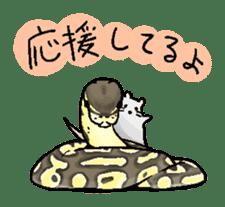 Python with Japanese message sticker #215164
