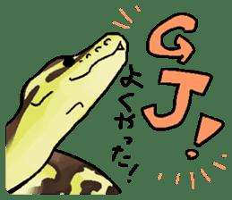 Python with Japanese message sticker #215166
