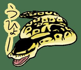 Python with Japanese message sticker #215167