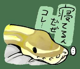 Python with Japanese message sticker #215170