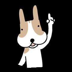 my dog KOTARO