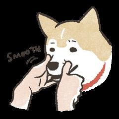 Shiba Inu (Shiba-Dog) stickers