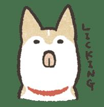 Shiba Inu (Shiba-Dog) stickers sticker #888291