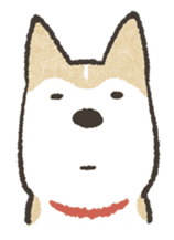 Shiba Inu (Shiba-Dog) stickers sticker #888302
