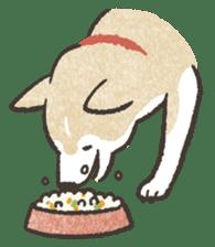 Shiba Inu (Shiba-Dog) stickers sticker #888305