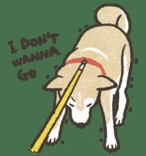 Shiba Inu (Shiba-Dog) stickers sticker #888312