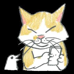 Higuchi Yuko's Boris the cat