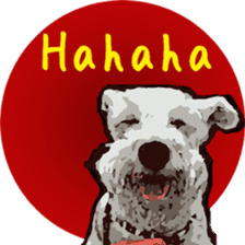 Boo Bii - The Schnauzers sticker #8328135
