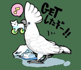 Mischievous parrot sticker #8562210