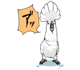 Mischievous parrot sticker #8562223