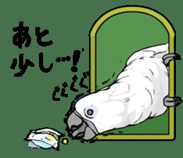 Mischievous parrot sticker #8562242