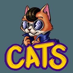 Funniest cat