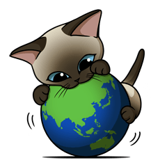 Cats of world