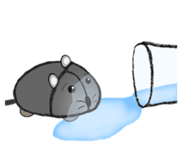 """I began the breeding of """"Mouse"""". sticker #4800387"""