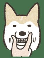 Shiba Inu (Shiba-Dog) stamps sticker #96523