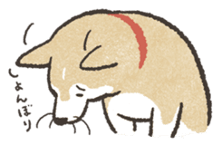 Shiba Inu (Shiba-Dog) stamps sticker #96526