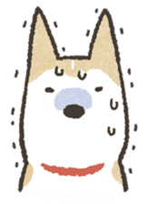 Shiba Inu (Shiba-Dog) stamps sticker #96530