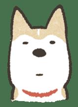 Shiba Inu (Shiba-Dog) stamps sticker #96539