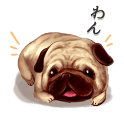 KOBITOS -casual stickers- sticker #694054