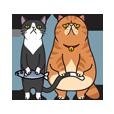猫のプライベート
